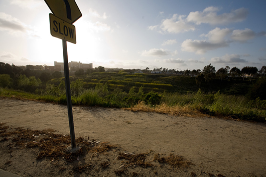 Looking west at the old Camp Matthews Rifle Range, University of California, San Diego, La Jolla, CA, 2008, archival inkjet print, 30